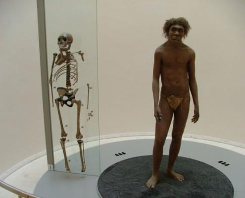 National Prehistoric Museum Les Eyzies de Tayac
