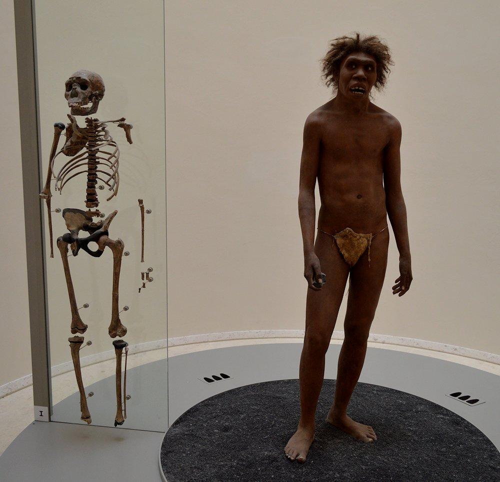 National Prehistoric Museum - Les Eyzies